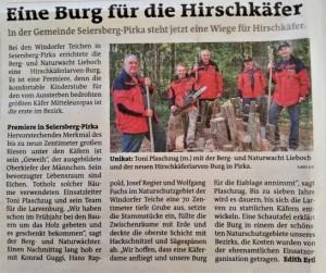 HirschkäferburgS